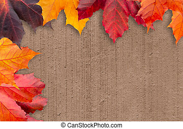 Border of autumn leaves on a beige textured background - a beautiful template for an autumn card or congratulations