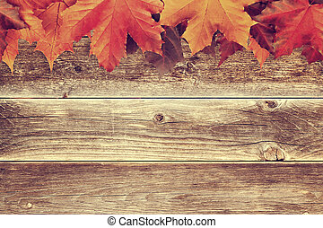 Border of autumn maple leaves on wooden background - a beautiful template for an autumn card or congratulations