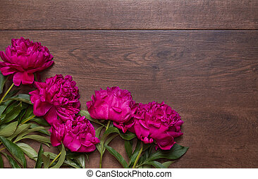 Border of peonies on a wooden background. Floral design. Pink and purple spring flowers