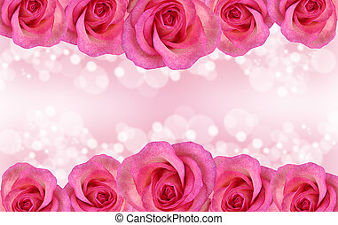 Border of pink roses - Border of blue rose on romantic...