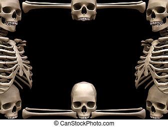 border1, skelett