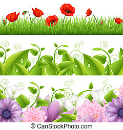 Borders With Flowers And Grass
