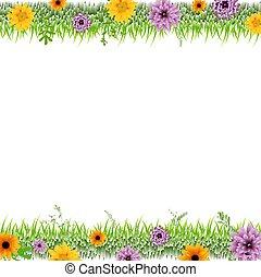 bordo, fiori, erba