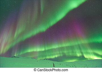 borealis, dageraad