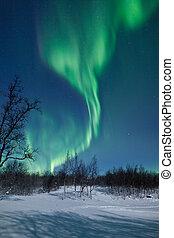 borealis, morgonrodnad, lights), (northern