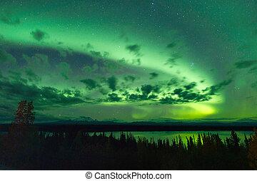 borealis, noordelijk, wilg, dageraad, hemel, meer, alaska, ...