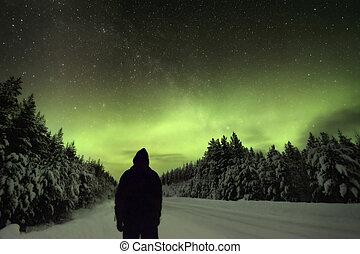 borealis, settentrionale, osservare, aurora, luci, silhoutte, uomo