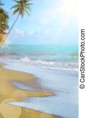 borrão, bonito, natureza, árvore palma, ligado, praia tropical, com, bokeh, luz sol, onda, abstratos, experiência., arte, férias verão, e, curso negócio, concept., vindima, cor, estilo