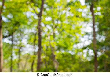 borrão, parque, abstratos, bokeh, natureza, fundo