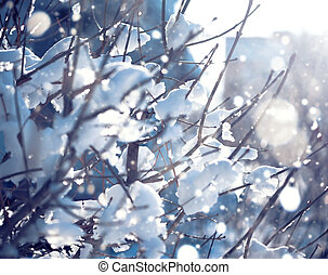 borrão, ramos, inverno, fundo, neve