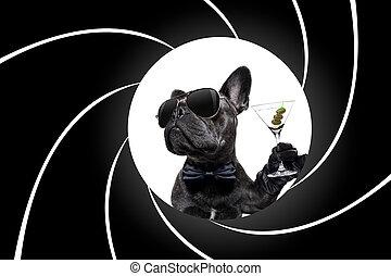 borracho, cóctel, perro, bebida