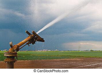 borrifo água, em, agricultura