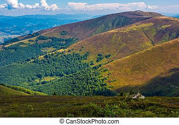 Borzhava ridge in Carpathian mountains in august. Classic...