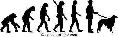 Borzoi evolution development with silhouette