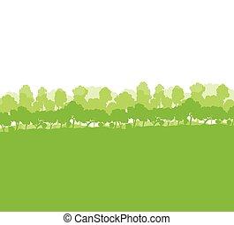 bos, bomen, silhouettes, landscape