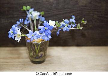bos van, lentebloemen