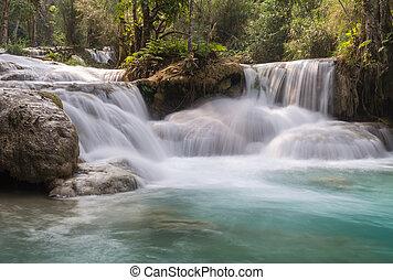 bos, waterval, regen, diep, jungle