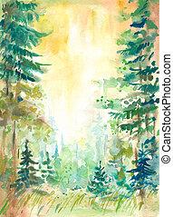 bos, zomer