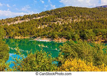 boscoso, liscio, riva, smeraldo, fiume, riflette