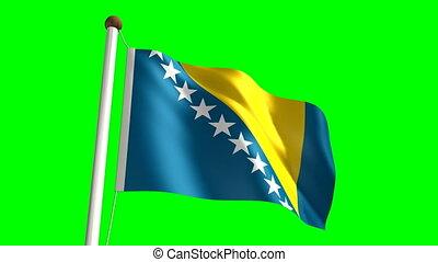 Bosnia Herzegovina flag video (seamless & green screen)