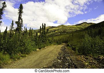bosque boreal, excursionismo