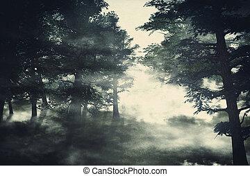 bosque brumoso, pino