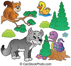 bosque, caricatura, animales, conjunto, 2