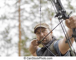 bosque, cazador, bow., aims., cazas, hombre