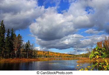 bosque de otoño, lago