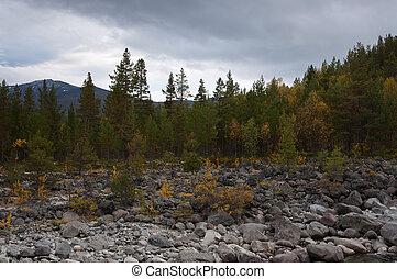 bosque de otoño, orilladel río, con, boulders.