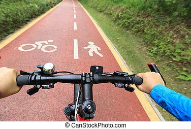 bosque, paseo,  Bikers, bicicleta, ojos, vista