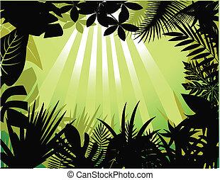 bosque tropical, silueta