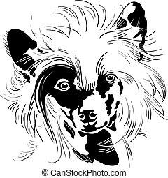 bosquejo, chino, crested, perro, mano, vector, dibujo