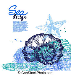 bosquejo, concha marina, mano, fondo., mar, náutico,...