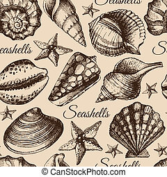 bosquejo, concha marina, pattern., seamless, ilustración,...