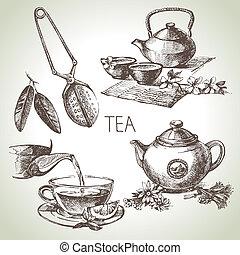 bosquejo, conjunto, té, mano, vector, dibujado