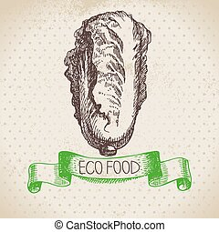 bosquejo, eco, mano, fondo., pe-tsai, alimento, vegetable.,...