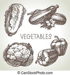 bosquejo, eco, set., ilustración, mano, foods.vector,...