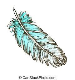 bosquejo, exterior, perdido, color, elemento, vector, pluma, pájaro