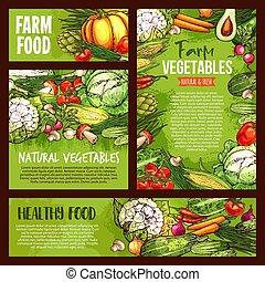 bosquejo, granja, vegetales, veggie, alimento, vector, carteles