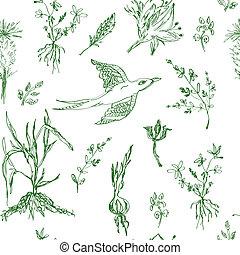 bosquejo, jardín, patrón, estilo, seamless, flores
