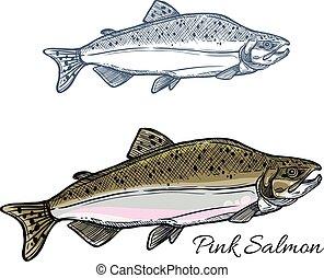 Bosquejo, mariscos,  Salmón, diseño, pesca, pez