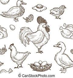 bosquejo, patrón, seamless, patos, fondo., vector, pollo