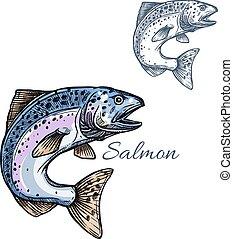 Bosquejo, pez,  Salmón, aislado,  vector, icono