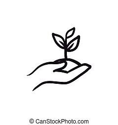 bosquejo, planta de semillero, tierra, manos de valor en...