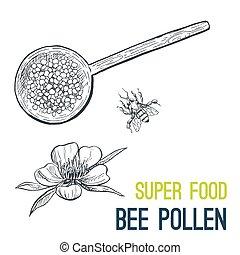 bosquejo, pollen., alimento, mano, vector, dibujado, abeja,...