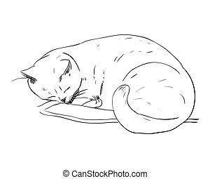bosquejo, vector, almohada, gato