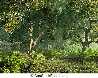 bosrijk, weide