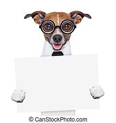 boss dog banner - funny boss dog holding a blank banner