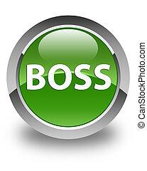 Boss glossy soft green round button